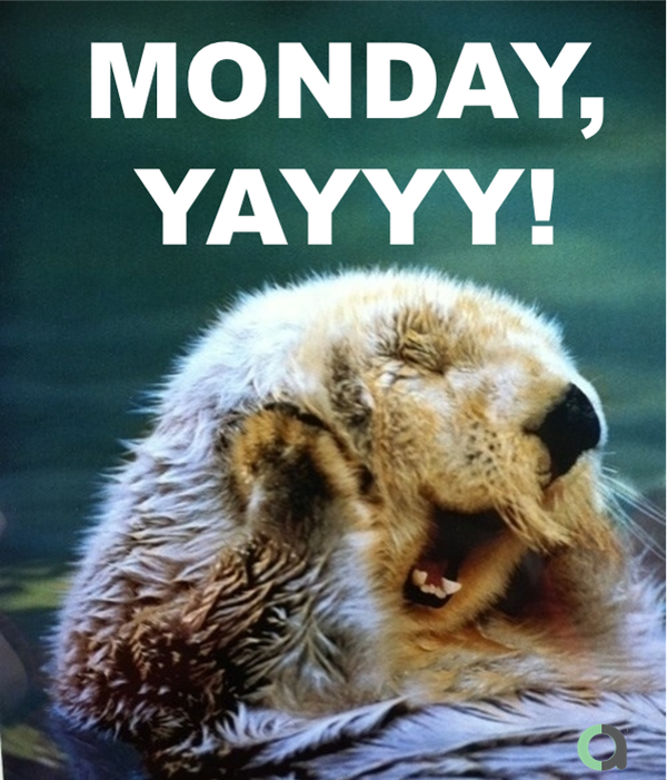 "Stack Up on Twitter: ""Monday again #RedShirts! You know ..."