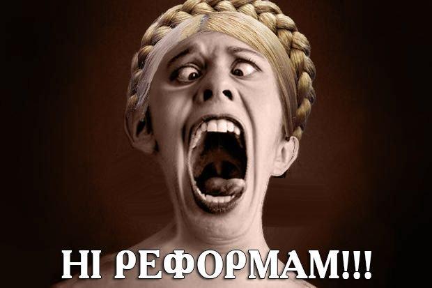 Будем убеждать нардепов отказаться от части поправок к пенсионной реформе, - Ирина Луценко - Цензор.НЕТ 3714