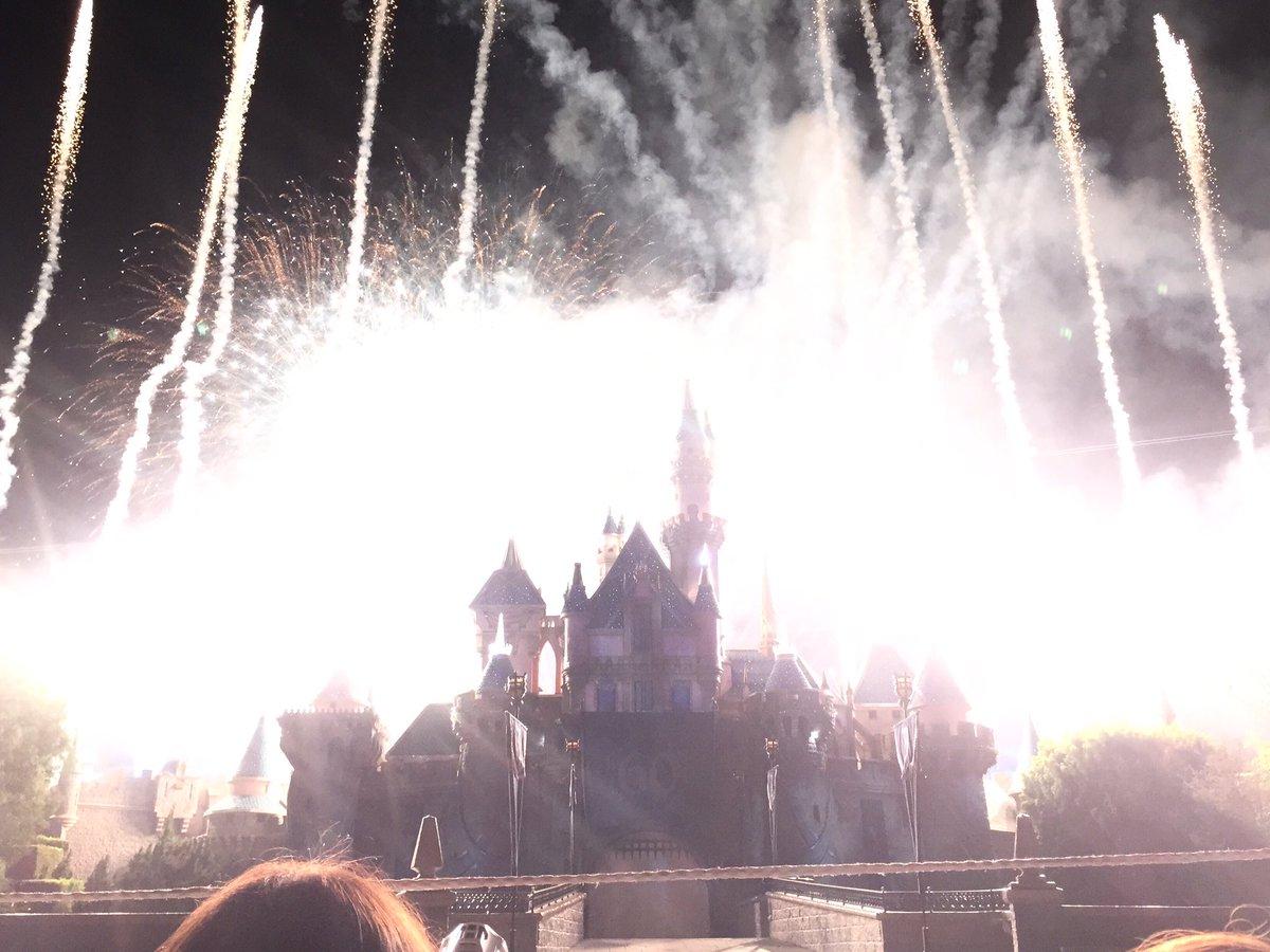 花火撮るの下手くそで大爆発したシンデレラ城  #全くインスタ映えしない風景写真選手権