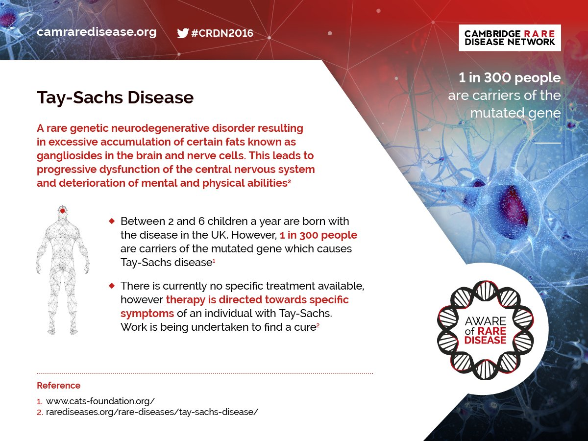 a research on tay sachs disease symptoms and therapies The cure tay-sachs foundation is dedicated to funding the on-going research needed to find treatments and a cure for tay-sachs disease once the cure for tay-sachs has been found - and we will find it - we will dedicate our efforts to promoting carrier-testing and tay-sachs awareness initiatives.