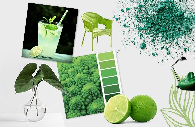 Avez-vous pensé au vert pour décorer votre intérieur ?https://t.co/mNXg2jWJdp https://t.co/bDiAUDRZ5Q