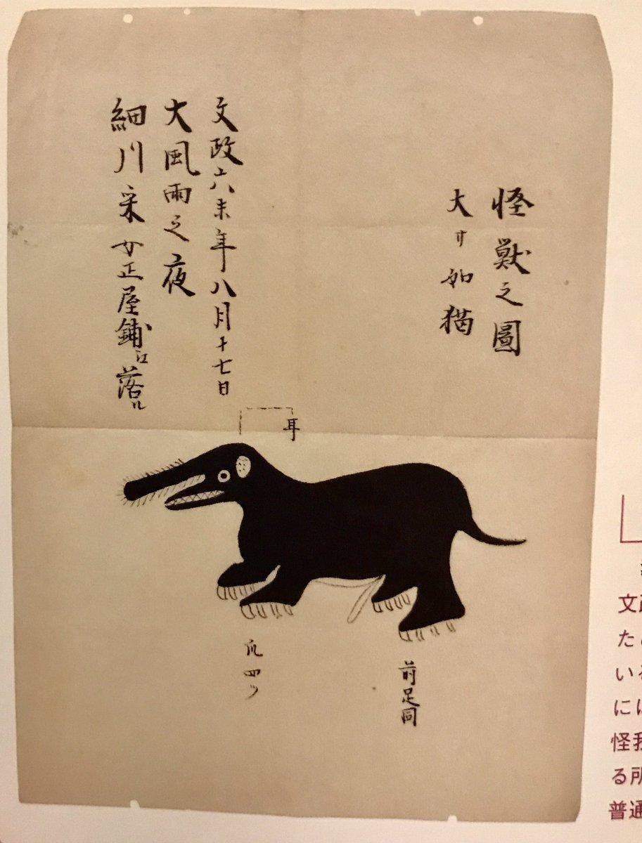 湯本豪一先生の『日本の幻獣図譜』を読んでると時々登場する「なんかすごいの見たんだけど画力が足りん…」って感じの絵がたまらなく愛おしい 最早描きたかったものがどんなだったかもわからないが、他にはない味わいがある