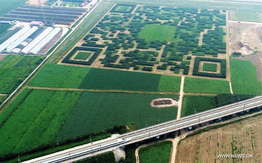 Composé de 130 000 arbres, ce QR Code redirige vers le site du village de Xilinshui (Chine) via WeChat. Inutile mais impressionnant ! 💡