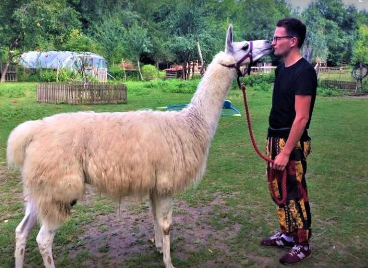 Our Challenge Events come in all shapes &amp; sizes. James &amp; Llama Kiera are trekking 1000 miles across #Europe for Guide Dogs #MondayMotivaton<br>http://pic.twitter.com/Lc9AOMRSEQ