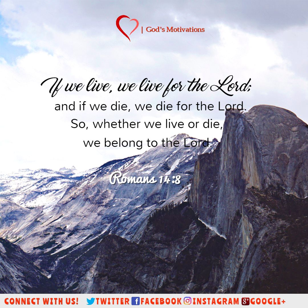 More Bible verses?  https:// buff.ly/2x7h0fv  &nbsp;   #bible #verse #of #the #day   #bibleverse #GodsMotivations  #motivations #God #gentleness<br>http://pic.twitter.com/lXAiWMEWu0