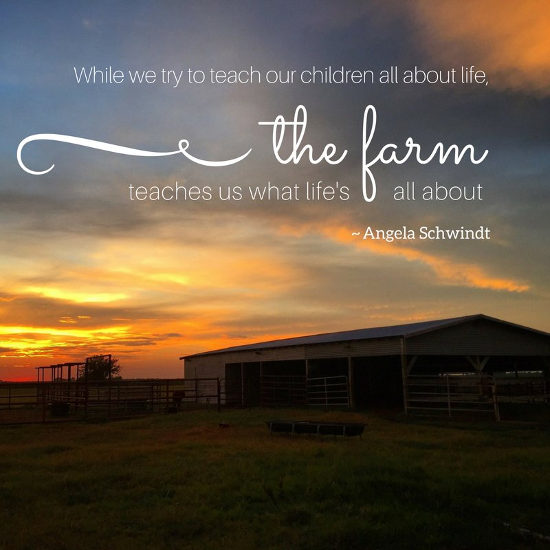 There's no better life than life on a farm. #MondayMotivation #farmlife <br>http://pic.twitter.com/zAb1n8SkVf