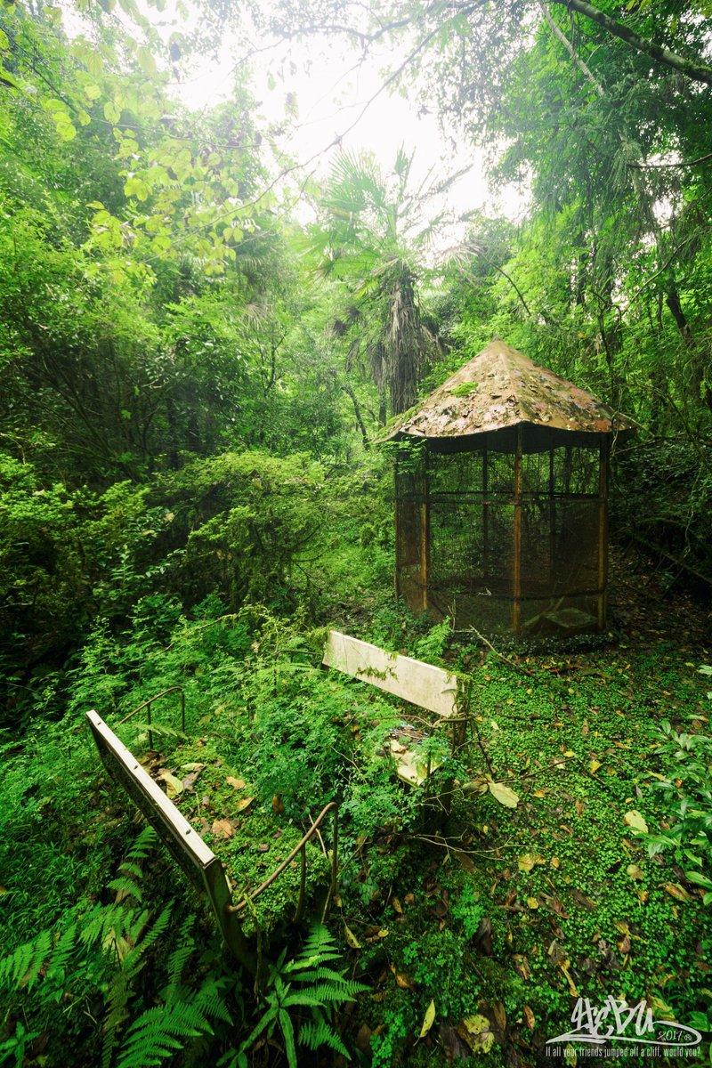 やっと行ってきました「森の遊園地」。 少し曇っていて湿気があった分、もやが雰囲気をアップ。 もう全てが最高のシチュエーション。  #廃墟 #廃遊園地 https://t.co/Tv8q5ktk2E