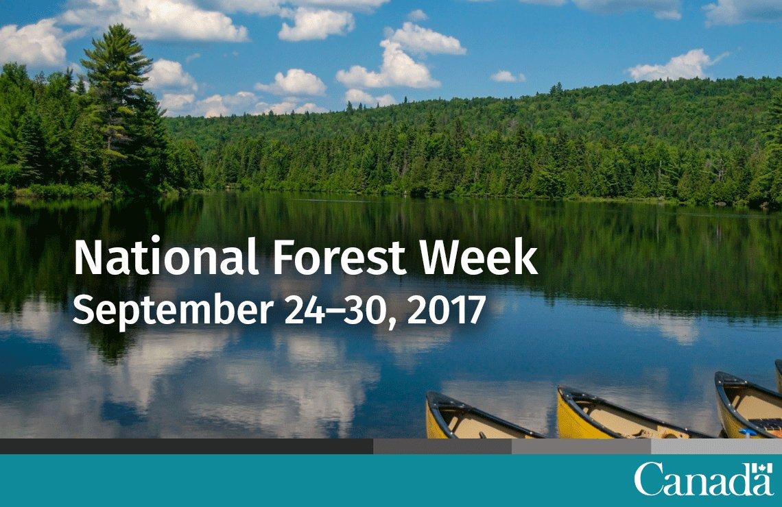 Eh 🇨🇦! Join us in celebrating #NationalForestWeek this week, September...