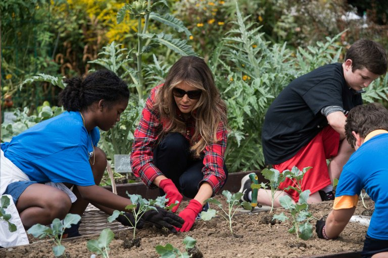 #Vegetable #Gardening continues at the #WhiteHouse. It should endure w every tenant. #KidsGardening #SeedYourFuture  https://www. goodnewsnetwork.org/melania-trump- harvests-michelle-obamas-vegetable-garden/ &nbsp; … <br>http://pic.twitter.com/9VISVKNhOc