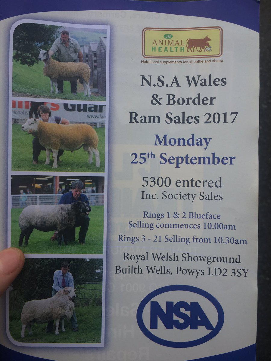 Nice few hours sheep shopping up in Builth at the @natsheep Ram sale today... #Texels #Sheep365 #Lads<br>http://pic.twitter.com/cxLGHjwjkV