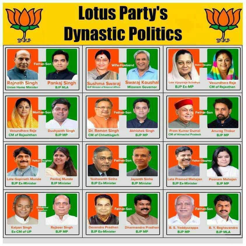 Image result for bjp dynasty politics list