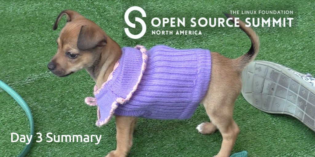 Watch my Day 3 summary of @linuxfoundation Open Source Summit co-hosted with @jonobacon and puppies! #OSSummit  https:// buff.ly/2fMwIUp  &nbsp;   <br>http://pic.twitter.com/usMzBYpkQS
