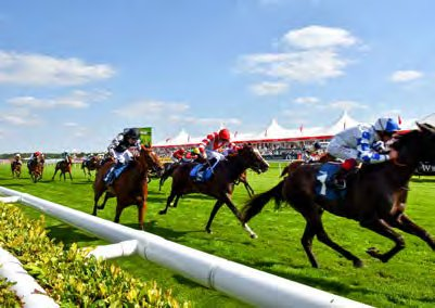 Enjoyed the St Leger Festival this year?  Book your places again for 2...