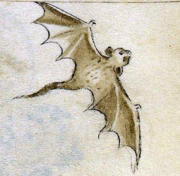 Winging it. Again.  #medievaltwitter #Mo...