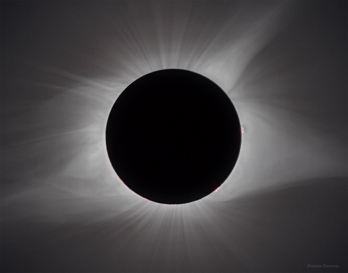 RT &amp; LIKE: Last chance to win this 12 x 18&quot; print of the Great American Eclipse!  My store:  https://www. etsy.com/shop/DamienCan nanePhoto &nbsp; … #astronomy #space #nasa<br>http://pic.twitter.com/3ysD0Oyhqe