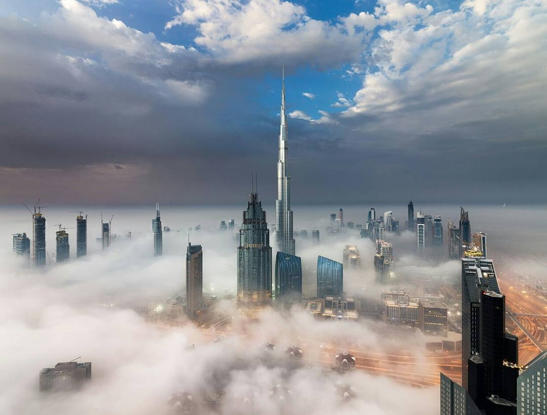 #dubia has just been added to my list. #...