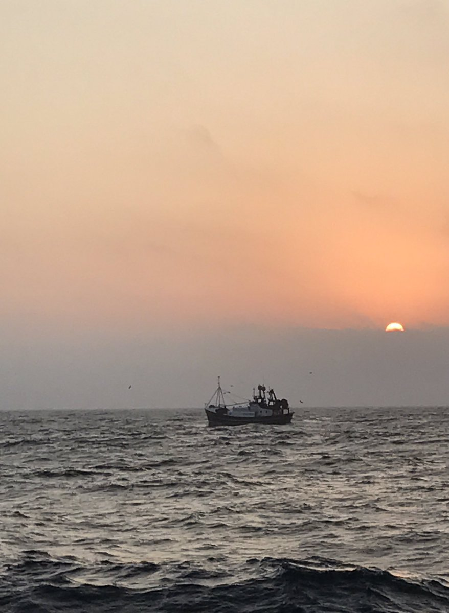 Fine morning to start another trip #fishing in the North Sea @LapwingPD972 @buddingrose418 #eatmorefish<br>http://pic.twitter.com/rNNjHUeKYg