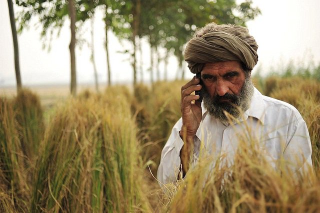 #Biotechnology approaches can help develop crop varieties to cope with #climatechange @ICRISAT @rajvarshney  http:// bit.ly/2hxj3R1  &nbsp;  <br>http://pic.twitter.com/zSqaeOGLiv