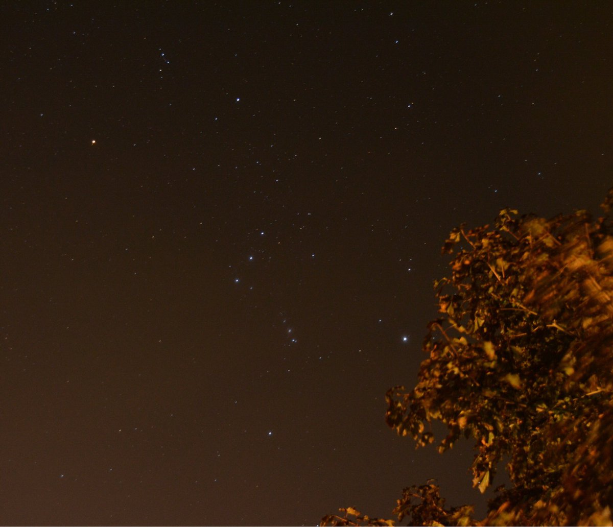 The return of Orion to the early morning sky. #PEI #astronomy #WinterIsComing<br>http://pic.twitter.com/phjA2SS5Hm