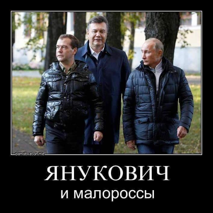 Совет Европы в Украине запустит проект защиты нацменьшинств - Цензор.НЕТ 3563