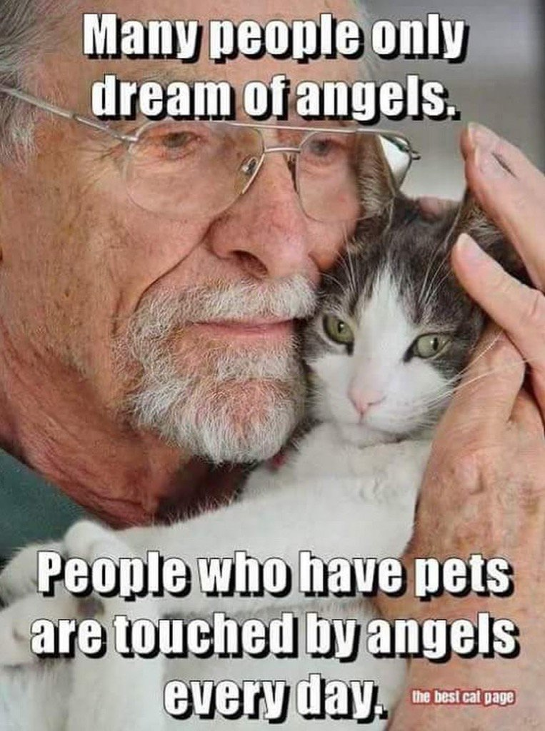 The Truth and Nothing but The Truth  #Love #Pets #Animals #Humanity <br>http://pic.twitter.com/PZFCISu5wb