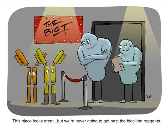 No non-specifics allowed! hahaha #sciencefunny #geekhumor #research  Image by Dr. Ed Himelblau <br>http://pic.twitter.com/tWf2WLaOtp