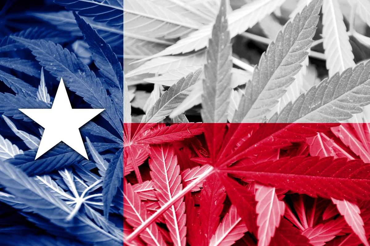The first Medical Cannabis License has officially been released in Texas.  #CBD #texas #license #cannabis  http:// ht.ly/9QbM30forql  &nbsp;  <br>http://pic.twitter.com/mjjnxQLuCa