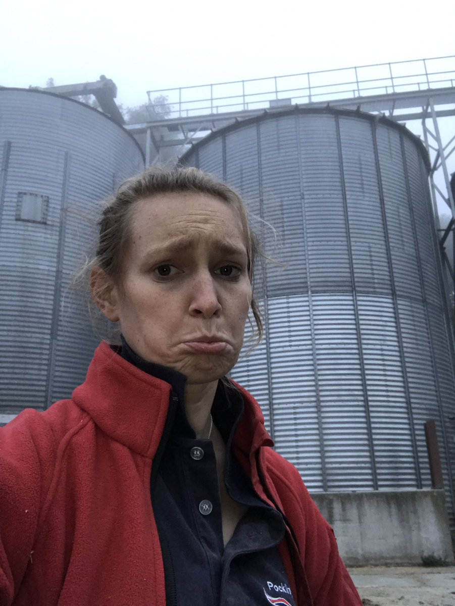 Still at work, going to be late for hockey AGAIN  #farming #triplef #dryingwheat #hockey<br>http://pic.twitter.com/Ba60gh68CR