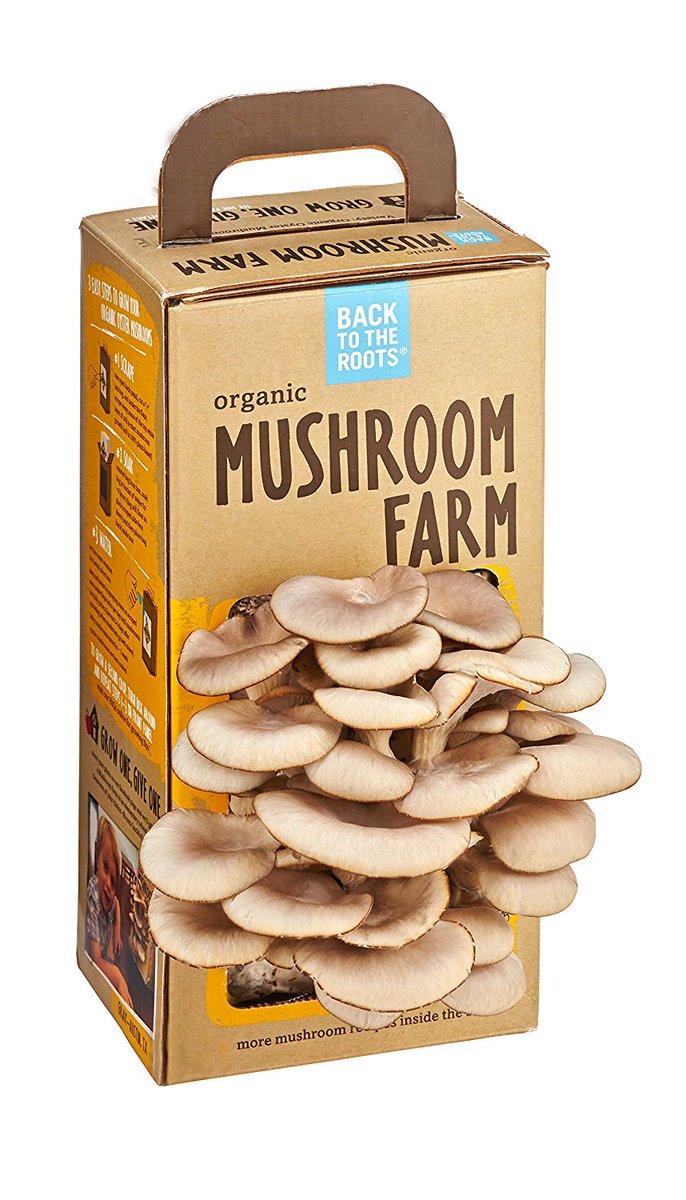Back To The Roots #Organic Mushroom Farm #Gardening #Farming  http:// ed.gr/c6r5  &nbsp;  <br>http://pic.twitter.com/CZIqvIroy5