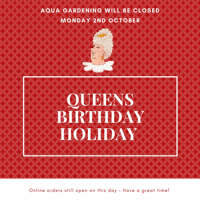 Just a note for our customers - we will be closed this Monday 2nd October for the #QueensBirthday public holiday. Online orders still open. <br>http://pic.twitter.com/i34cZ4PetK