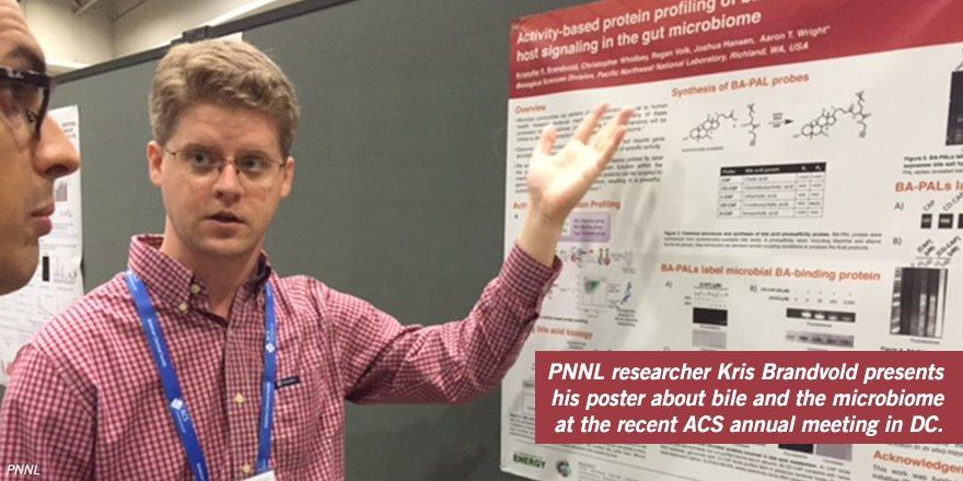 Profiling the gut #microbiome proteins that modify #bile |  https:// goo.gl/VdC1cq  &nbsp;  <br>http://pic.twitter.com/7GCnyklMjb