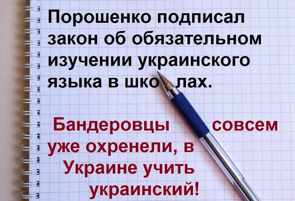 Гриневич: Мы можем обсуждать увеличение доли школьных предметов на языках национальных меньшинств - Цензор.НЕТ 7066
