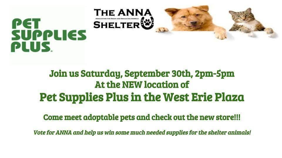 The Anna Shelter On Twitter Stop On In The The New Pets Supplies
