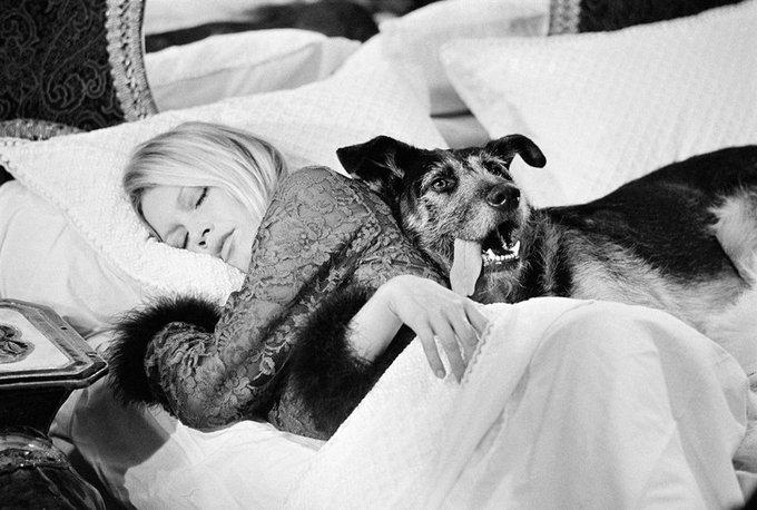 Happy birthday Brigitte Bardot !  Terry O\Neill
