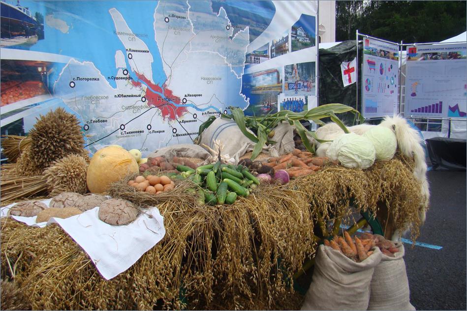 Сельскохозяйственная выставка картинки