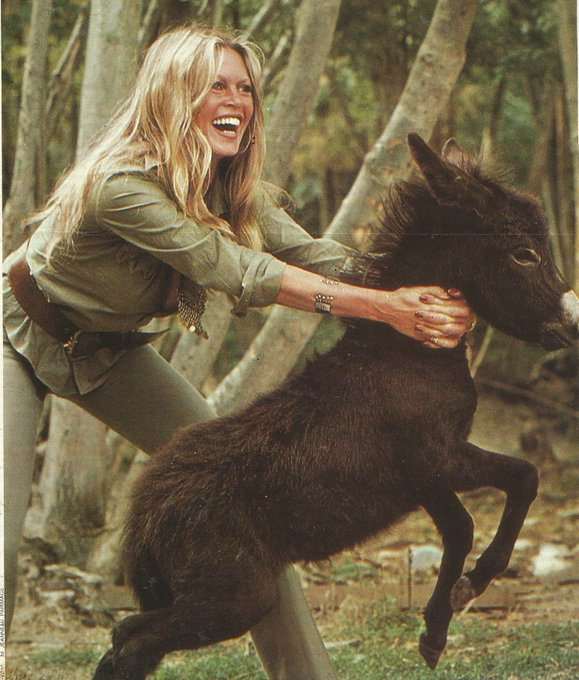Happy Birthday, Brigitte Bardot! Born 28 September 1934 in Paris, France