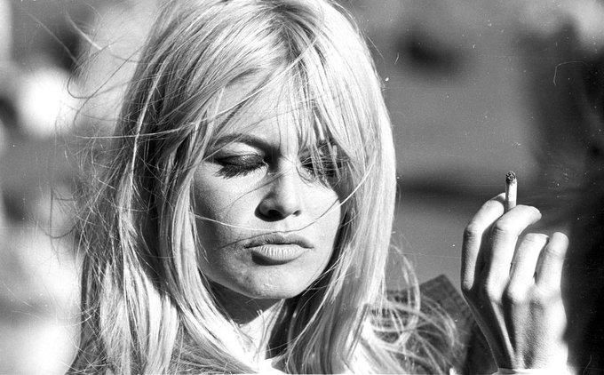 Bebe    83  happy birthday Brigitte Bardot