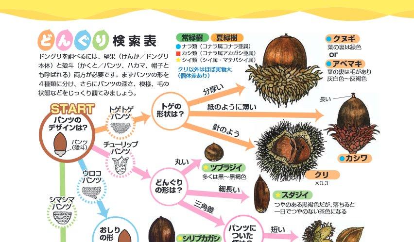日本自然保護協会(NACS-J) on ...