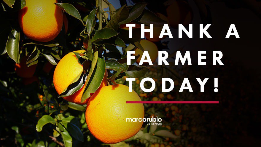 Today is #NationalFarmersDay. Thank you for all you do for Florida's p...