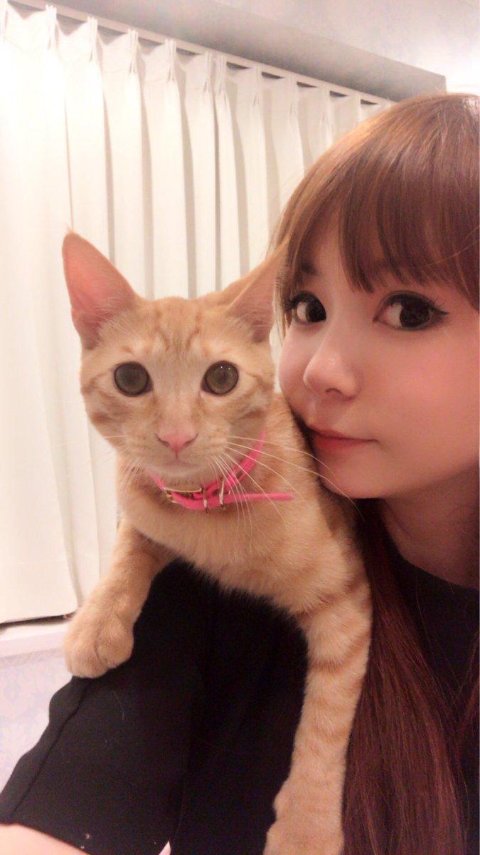 メポと中川翔子