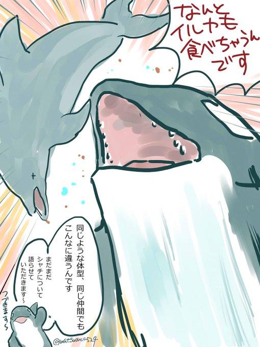 サメとシャチってどっちが強いのに答えるシャチ愛があふれるマンガ
