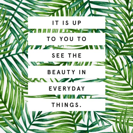 Your #WednesdayWisdom is to see the beauty in something unconventional. What catches your attention when you become #mindful? #mentalhealth <br>http://pic.twitter.com/CKNnmClibF