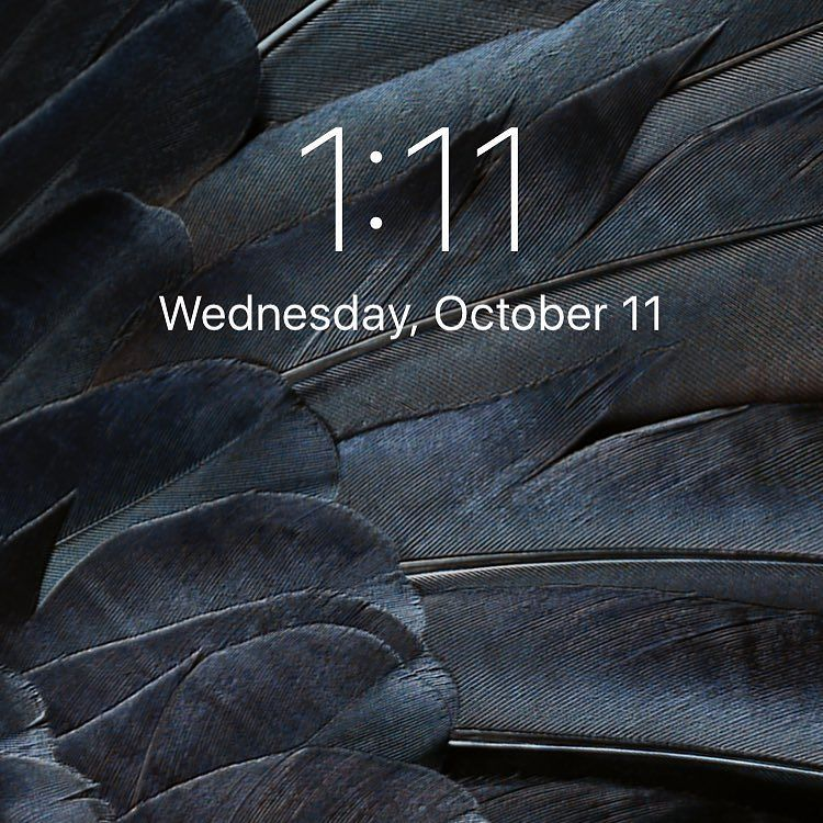 1:11 on October 11  . . . #111 #angels #angelnumbers #oracle #medium #spiritualist #mystic #witch #seer #intuiti…  http:// ift.tt/2yczrhI  &nbsp;  <br>http://pic.twitter.com/8CFIIrvgEX