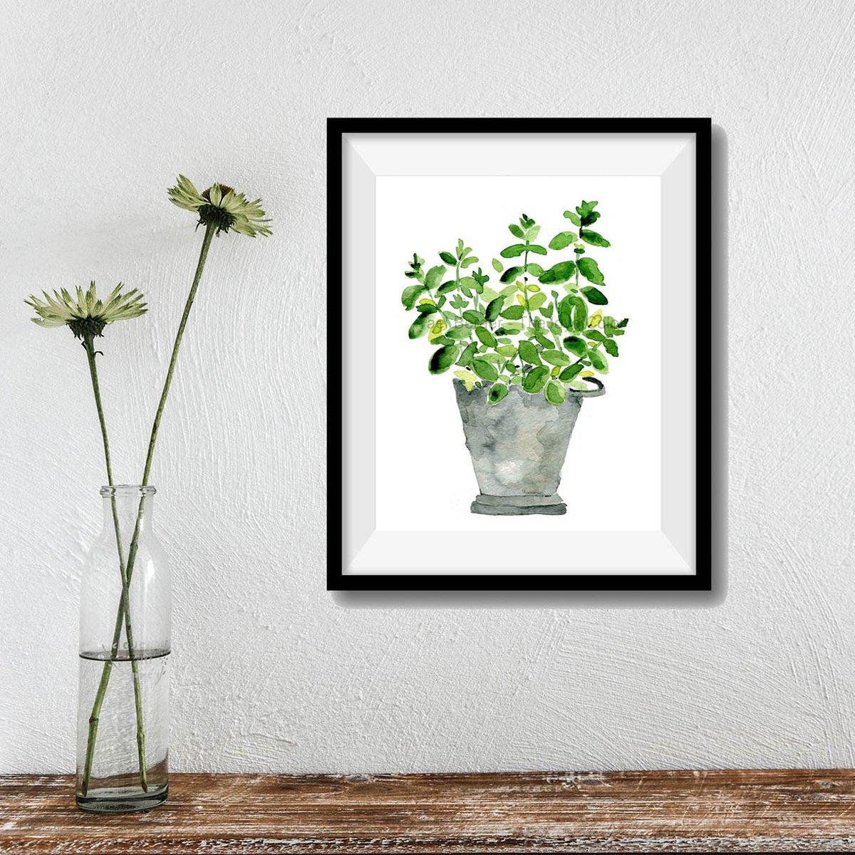 Like it green ? see my mint plant art print   https://www. etsy.com/listing/126986 817/mint-plant-art-print-mint-in-a-tin?ref=pr_shop &nbsp; …  #artwork #kitchen #Foodie #green #mint #kitchenart #shopsmall<br>http://pic.twitter.com/DhxOsBx6dt