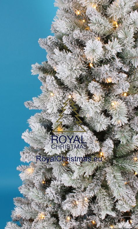 Royal Christmas on Twitter: \