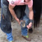 If Carlsburg made Farrier's!! Meet the guy that played a key part in Suedois' Shadwell mile win. Well done Rich Elkins!!