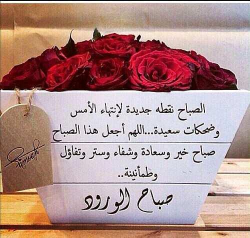 امين يا رب العالمين https://t.co/m8a87py...