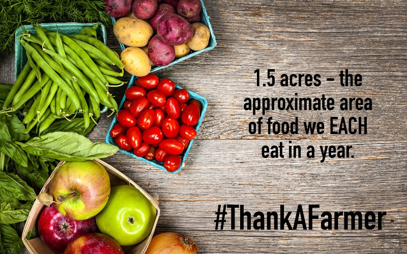 Today's #farmer grows twice as much food as the generationbefore them – using less land, energy, water and fewer emissions. On #NationalFarmersDay we salute their hardworking efforts every day to feed a growing population. #ThankaFarmer<br>http://pic.twitter.com/KN7wcBKbtu