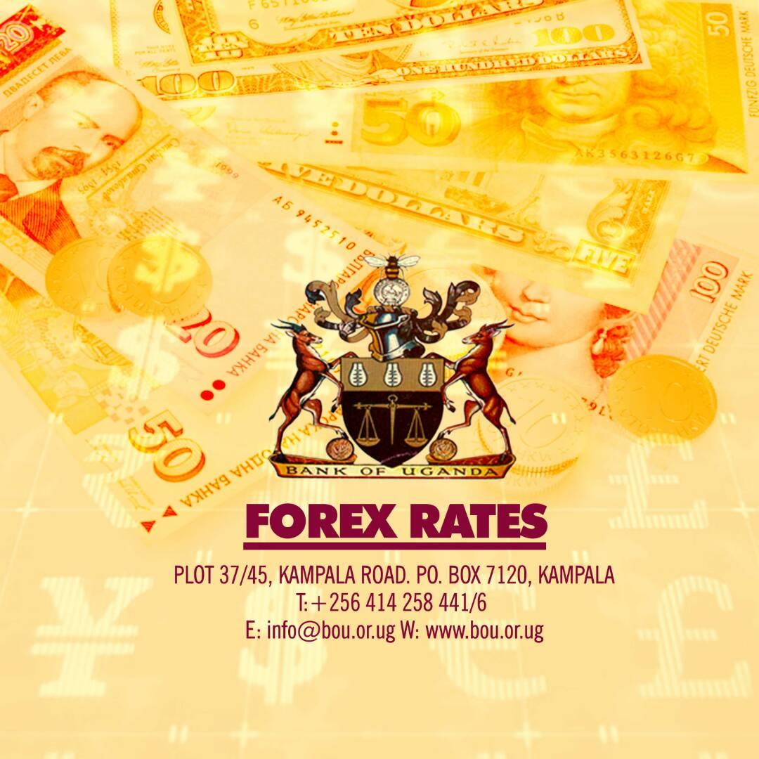 Bou forex rates