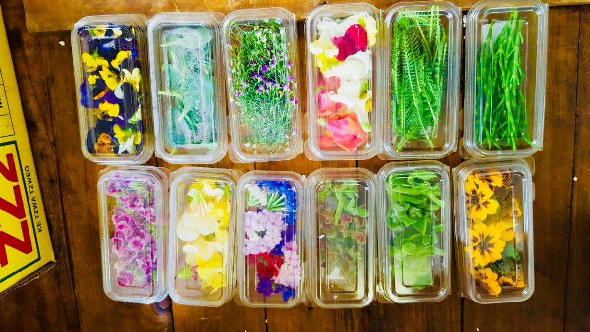 Beautiful Summer salad flowers at Ebb &amp; Flo Cafe  #ebbandflocafe #durban #umhlanga <br>http://pic.twitter.com/g1HylZZibj